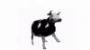 Аватар пользователя wowo121