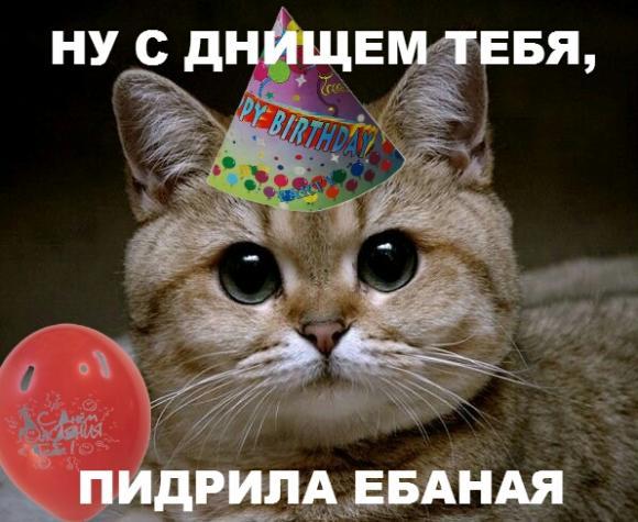 http://hateit.ru/sites/hateit.ru/files/imagecache/Wall/-%D1%80%D0%BE%D0%B6%D0%B4%D0%B5%D0%BD%D0%B…